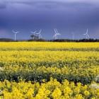 Burton Wold Wind Farm, Northamptonshire